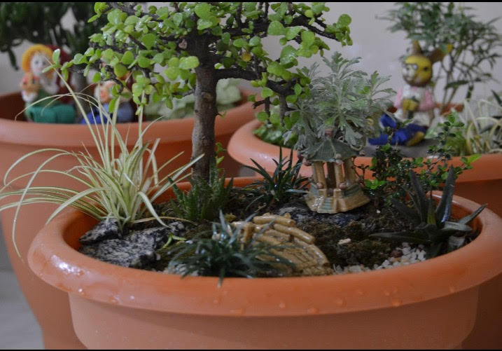 How to do a fairy garden