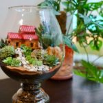 Art of terrarium making in bangalore