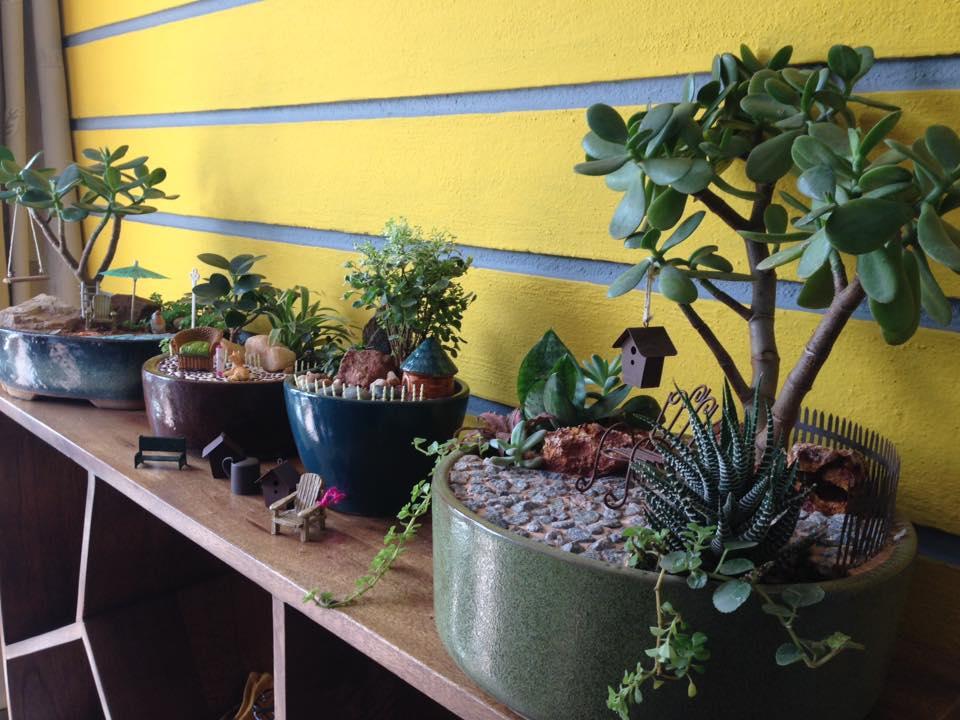 gardening-miniature gardening