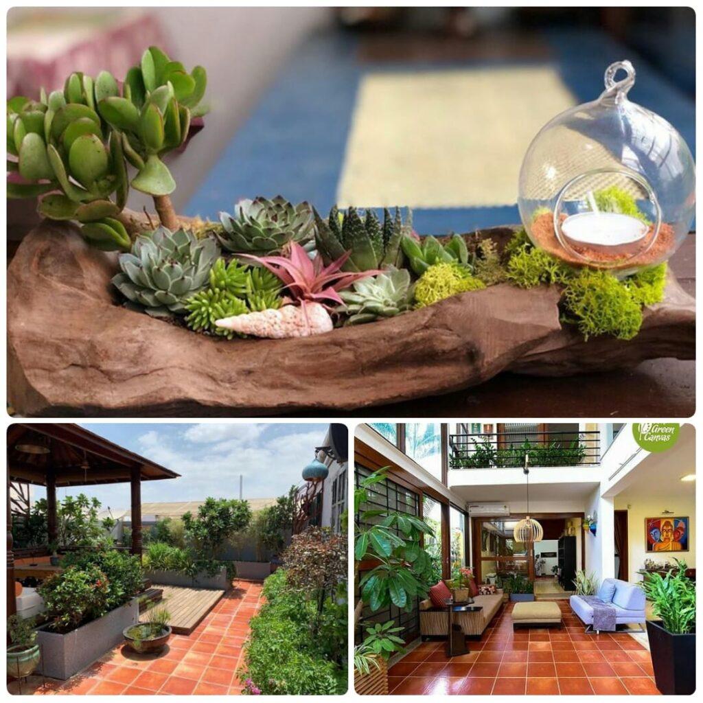 Gardening in the Shade -Balcony & Indoor Gardening for Beginners